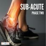 Sub Acute Ankle Injury Exercises